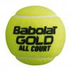 Babolat Gold Can Tennis Balls